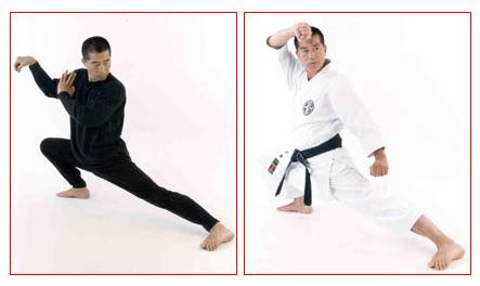 Master-Sato---Kata-Taichi-pose