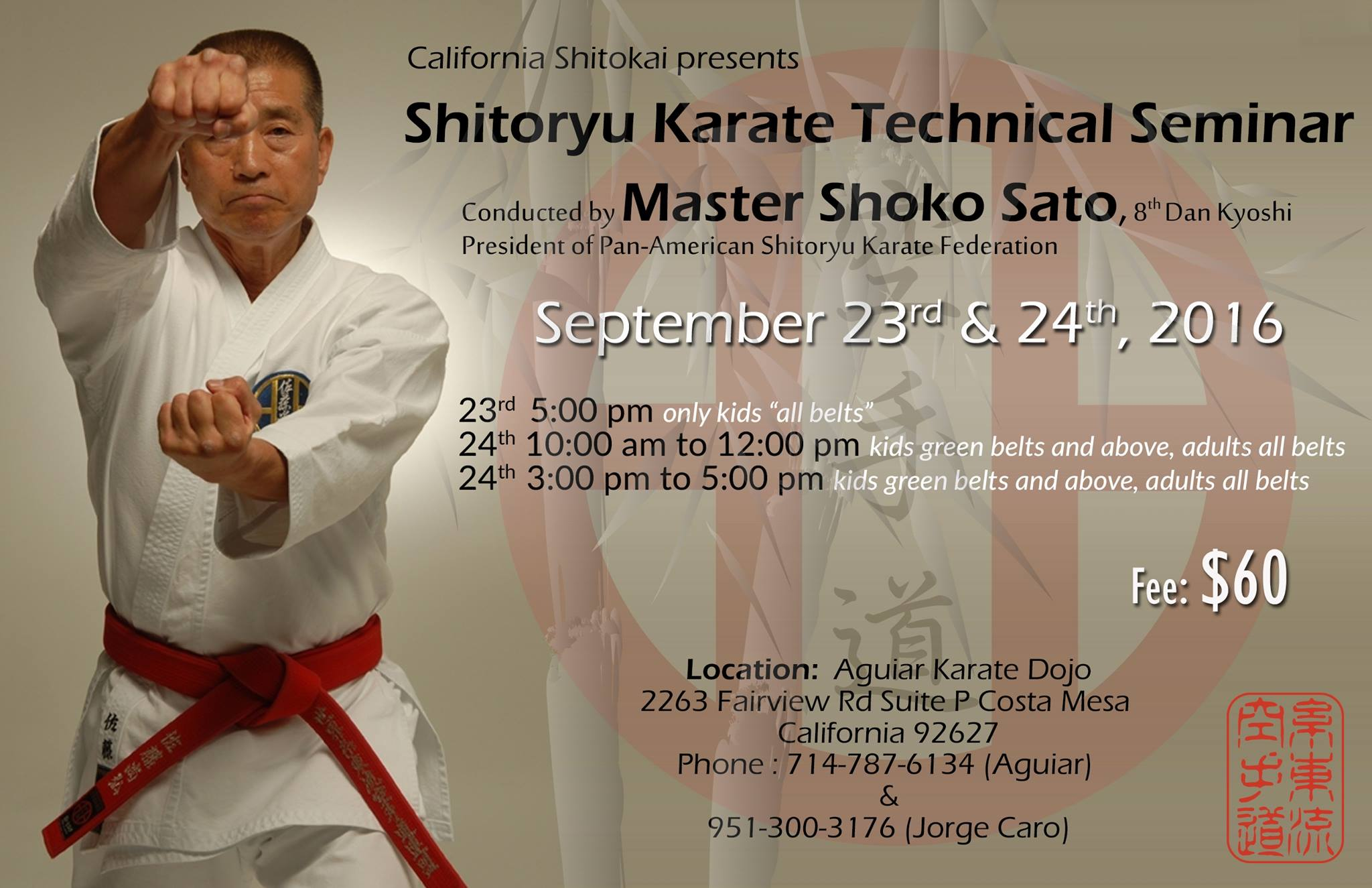 Master Shoko Sato Technical Seminar in California